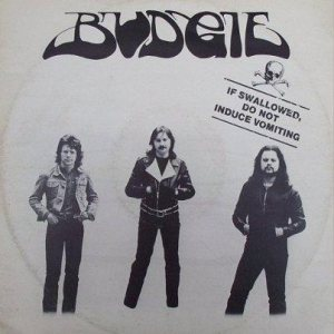 Budgie - If Swallowed, Do Not Induce Vomiting cover art