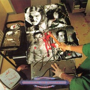 Carcass - Necroticism: Descanting the Insalubrios cover art