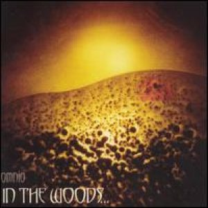 In The Woods - Omnio cover art