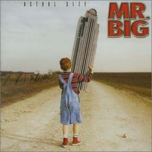 Mr.Big - Actual Size cover art