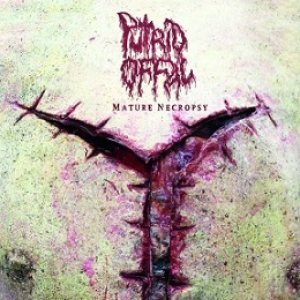 Putrid Offal - Mature Necroposy cover art