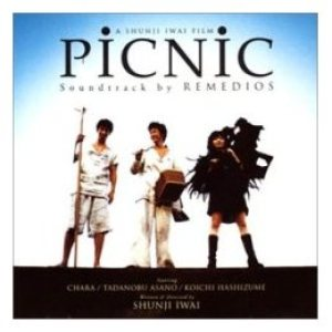 Remedios - Picnic cover art