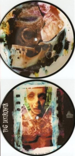 "Pig Destroyer - Picture Disc 7"" cover art"