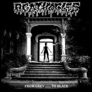 Agathocles - From Grey....... to Black cover art