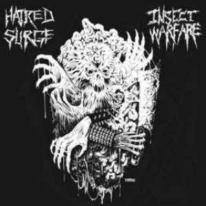 Insect Warfare / Hatred Surge - Insect Warfare / Hatred Surge cover art