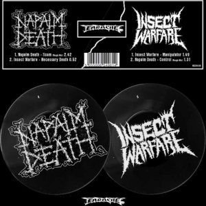 Napalm Death / Insect Warfare - Napalm Death / Insect Warfare cover art