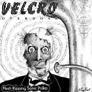 Velcro Overdose - Flesh Ripping Sonic Polka cover art
