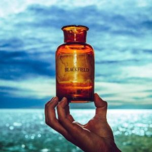 Blackfield - Blackfield V cover art