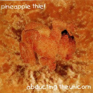 The Pineapple Thief - Abducting the Unicorn cover art