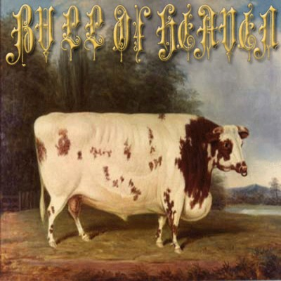 Bull of Heaven - 210: Like a Wall in Which an Insect Lives and Gnaws cover art