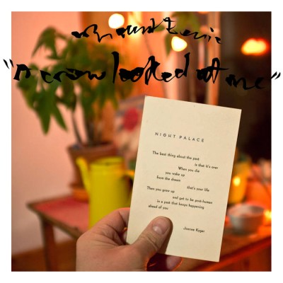 Mount Eerie - A Crow Looked at Me cover art