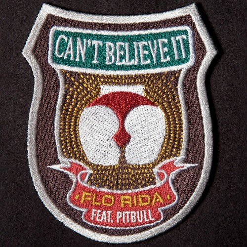 Flo Rida / Pitbull - Can't Believe It cover art